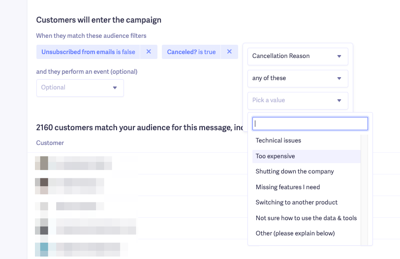 winback email custom audience